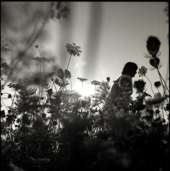 http://beninnes.com/files/gimgs/17_whitney-amongst-the-flowers.jpg